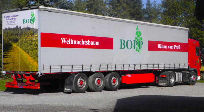 Weihnachtsbaeume-Bopp_033